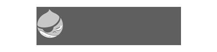 Bay Area Drupal Camp Logo
